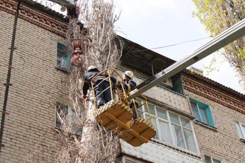 В Луганске сухой тополь упал на крышу жилого дома (фото)